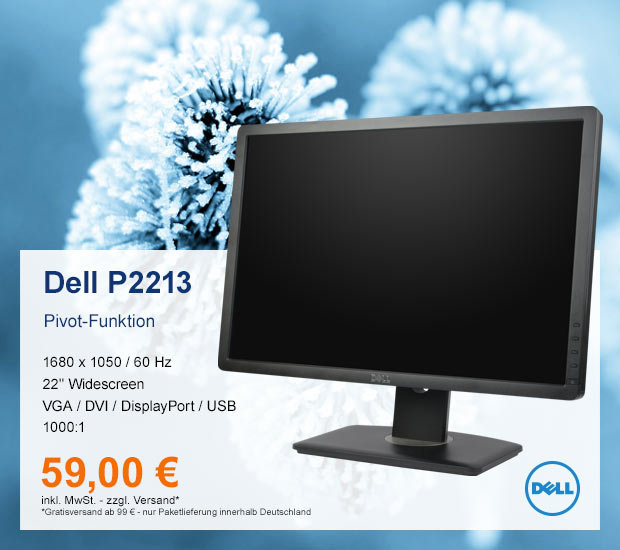 Dell Professional P2213